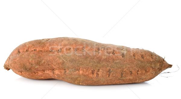 Zoete aardappel witte plantaardige aardappel zoete witte achtergrond Stockfoto © cynoclub