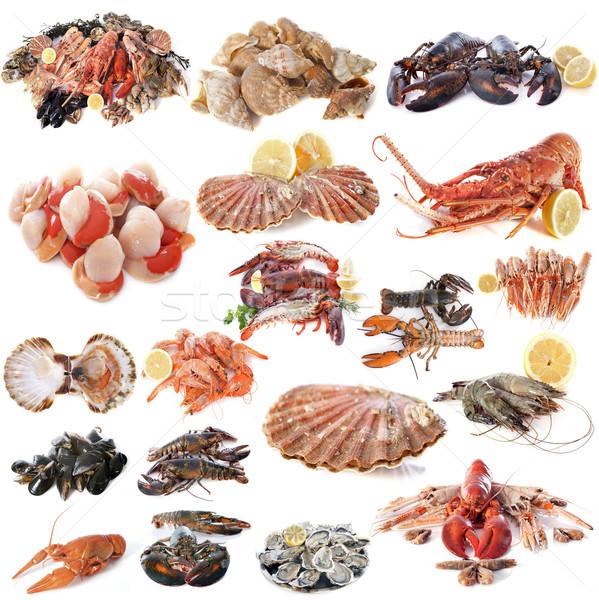 Zeevruchten schelpdier witte voedsel groep citroen Stockfoto © cynoclub