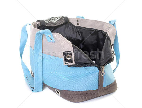 travel bag for dogs Stock photo © cynoclub