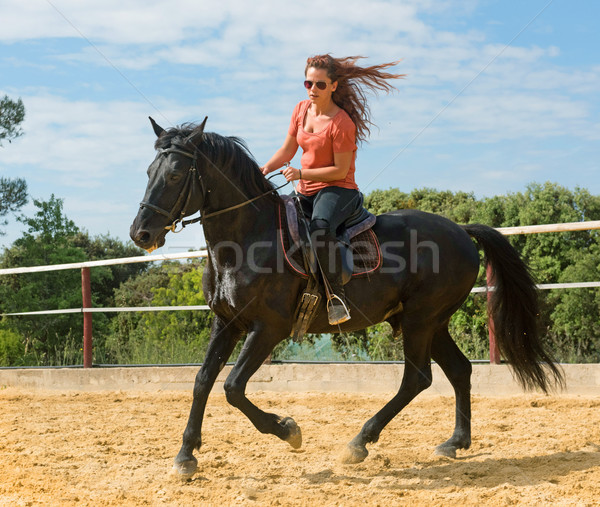 riding girl and horse Stock photo © cynoclub