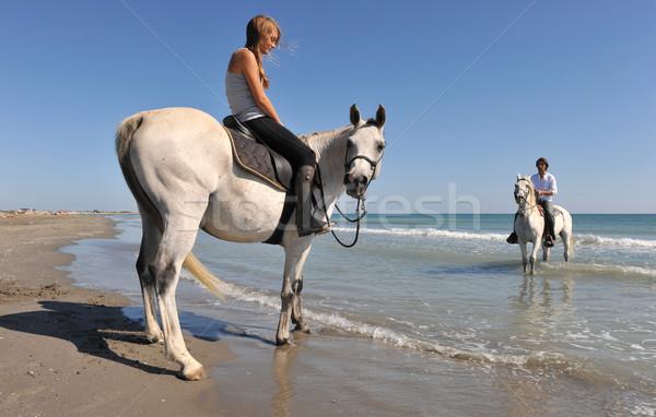 horseback riding on the beach Stock photo © cynoclub
