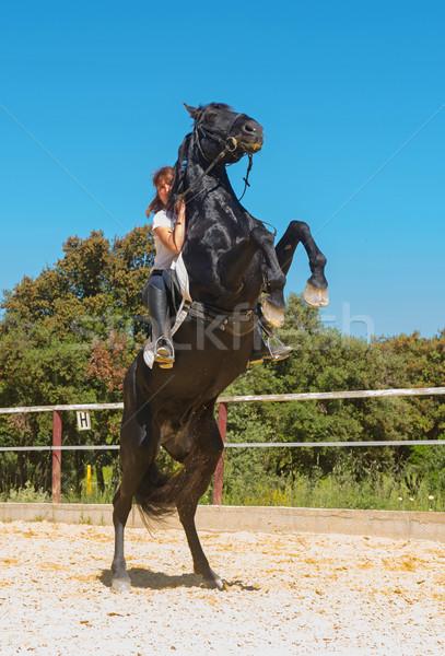 training of riding girl Stock photo © cynoclub