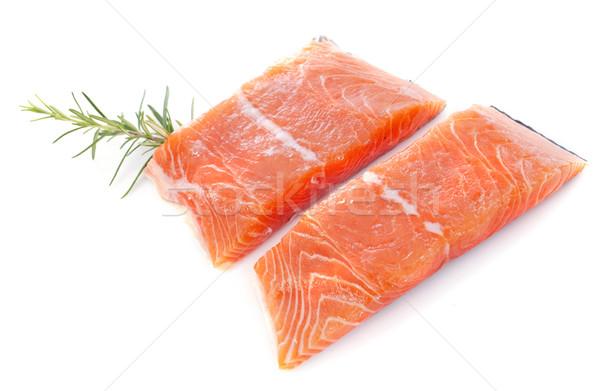 salmon fillets Stock photo © cynoclub