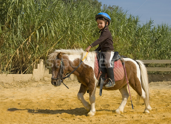 Stock photo: child and pony