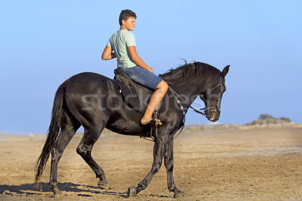 young rider on the beach Stock photo © cynoclub