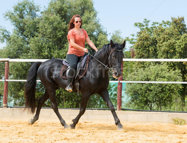 riding girl and stallion Stock photo © cynoclub