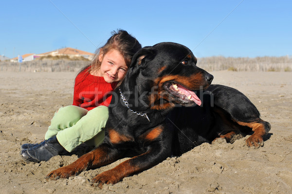 Rottweiler çocuk plaj portre küçük kız Stok fotoğraf © cynoclub