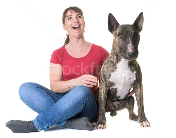 woman and bull terrier Stock photo © cynoclub
