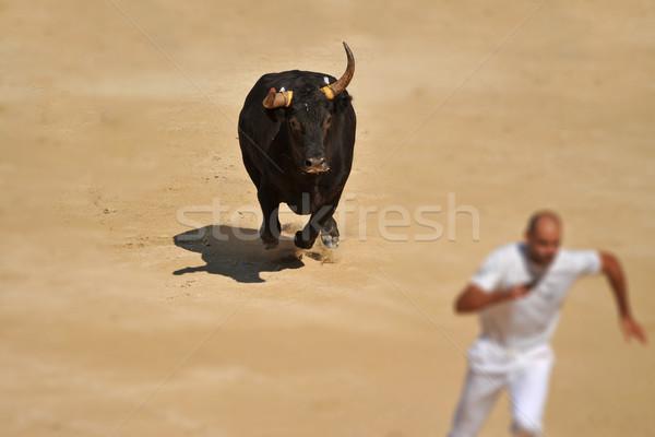 Fut bika dühös aréna férfi sport Stock fotó © cynoclub