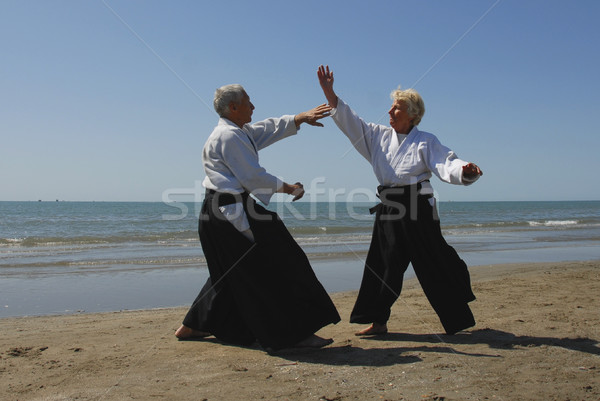 Aikido la twee volwassenen opleiding Stockfoto © cynoclub