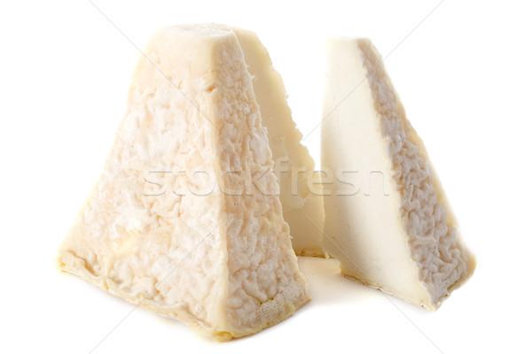 Сыр из козьего молока святой сыра студию открытых Франция Сток-фото © cynoclub
