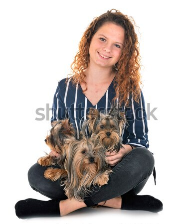 woman and miniature schnauzer Stock photo © cynoclub
