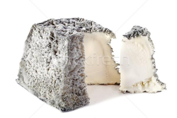 Сыр из козьего молока продовольствие сыра студию Франция белом фоне Сток-фото © cynoclub