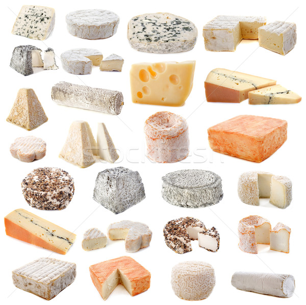 various cheeses Stock photo © cynoclub