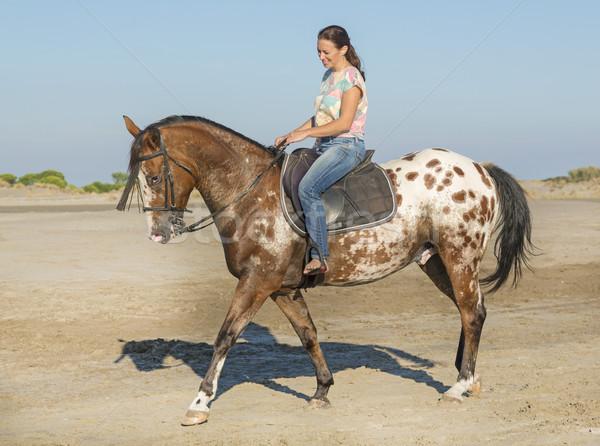 woman and appaloosa horse Stock photo © cynoclub