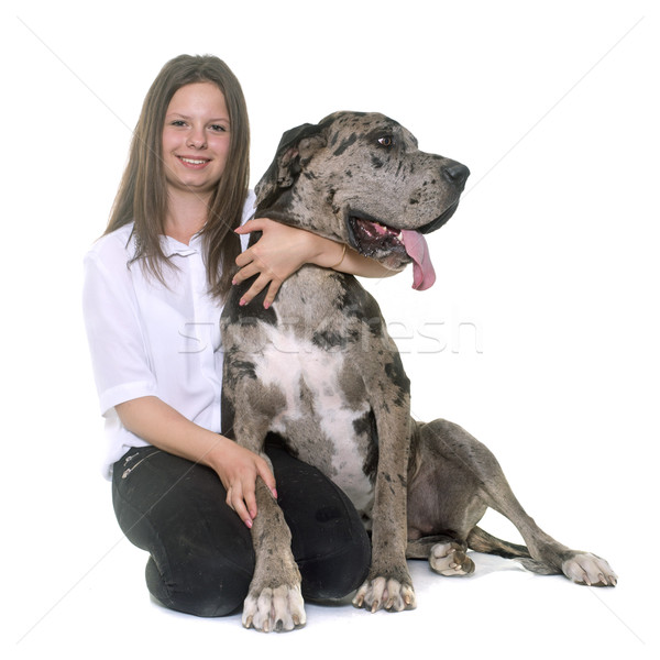 Great Dane and teenager Stock photo © cynoclub