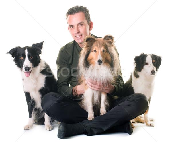 Zdjęcia stock: Trzy · psów · człowiek · biały · psa · grupy