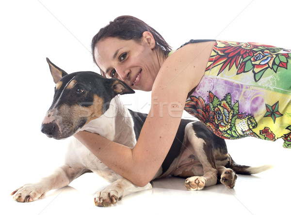 bull terrier and woman Stock photo © cynoclub