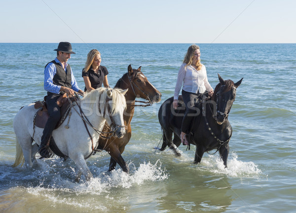 group of horse riders Stock photo © cynoclub