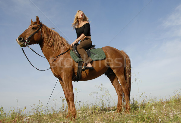 pretty teen and stallion Stock photo © cynoclub