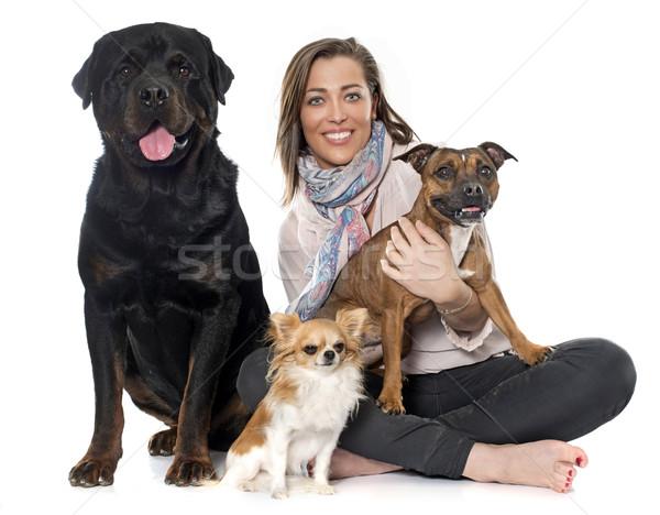 Zdjęcia stock: Kobieta · psów · biały · psa · miłości · piękna