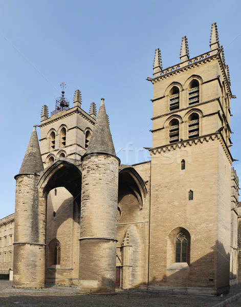 Cathedral Saint Pierre, Montpellier Stock photo © cynoclub