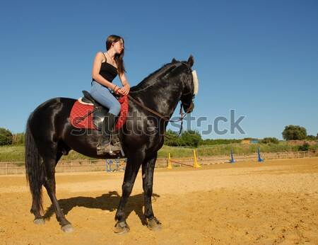 horse and women in dressage Stock photo © cynoclub