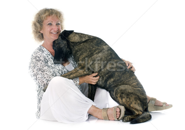 woman and Holland Shepherd Stock photo © cynoclub