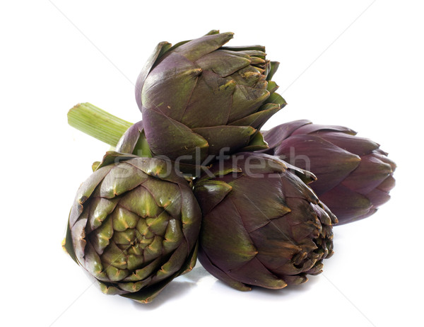 group of purple artichoke Stock photo © cynoclub