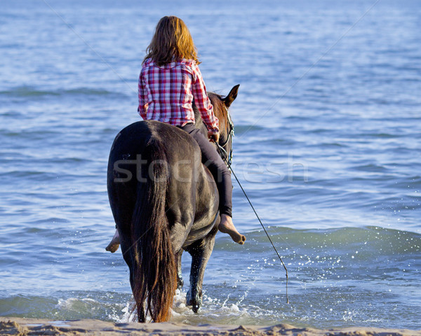 teen and horse in the sea Stock photo © cynoclub
