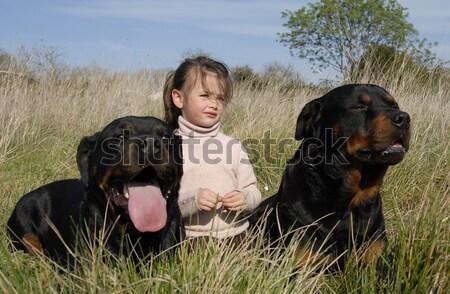 Little girl grande cão jovem melhor amigo natureza Foto stock © cynoclub