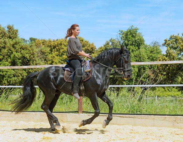 riding woman on stallion Stock photo © cynoclub