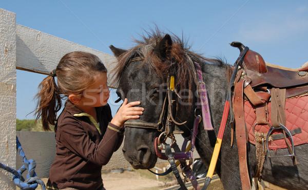 Stock photo: little girl and shetmand