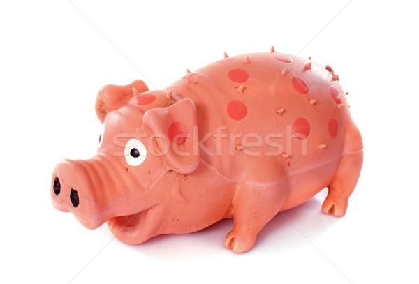 свинья игрушку белый весело студию Сток-фото © cynoclub