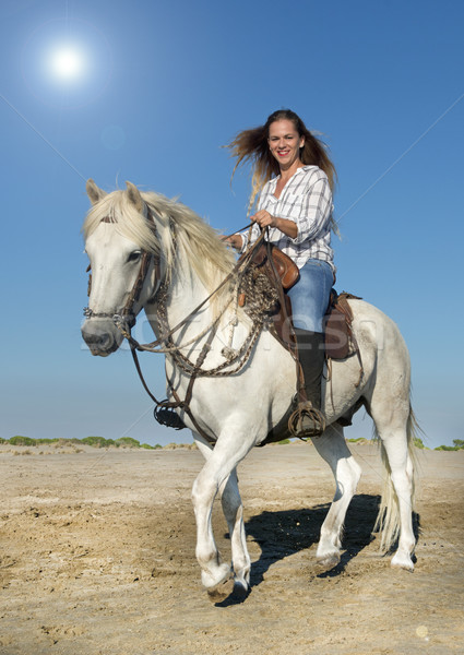 horse woman and stallion Stock photo © cynoclub