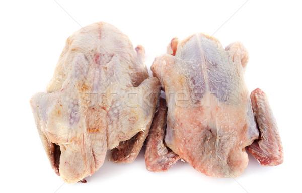 partridge meat Stock photo © cynoclub
