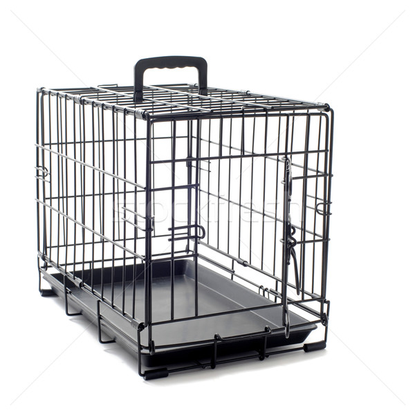 pet carrier Stock photo © cynoclub