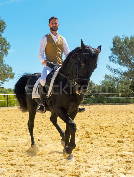 training of riding man Stock photo © cynoclub