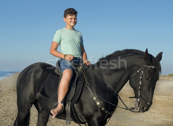 teenager and horse Stock photo © cynoclub