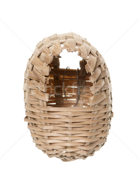 osier nest bird Stock photo © cynoclub