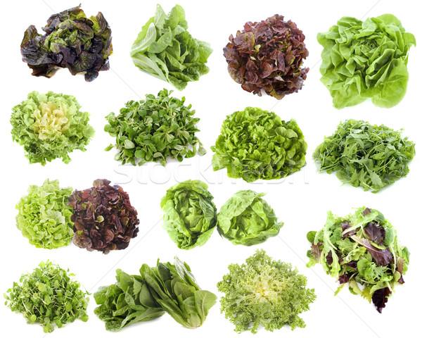 varieties of salads Stock photo © cynoclub