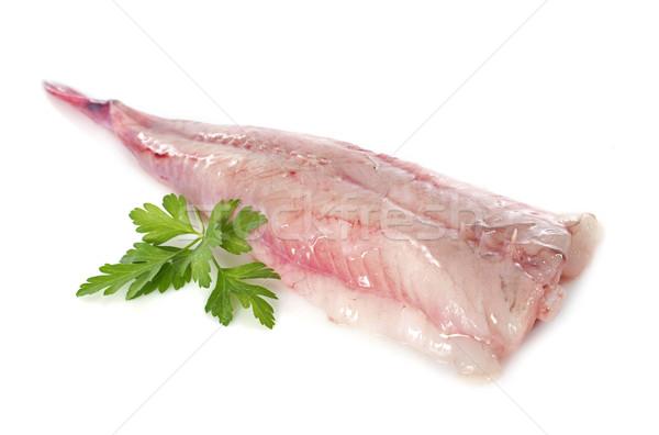 monkfish Stock photo © cynoclub