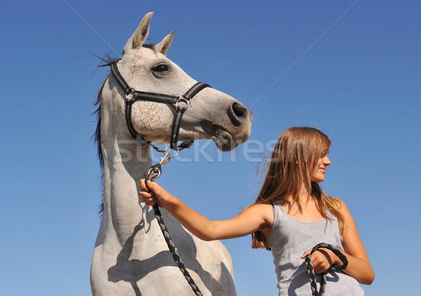 Teen arabski konia młodych nastolatek szary Zdjęcia stock © cynoclub