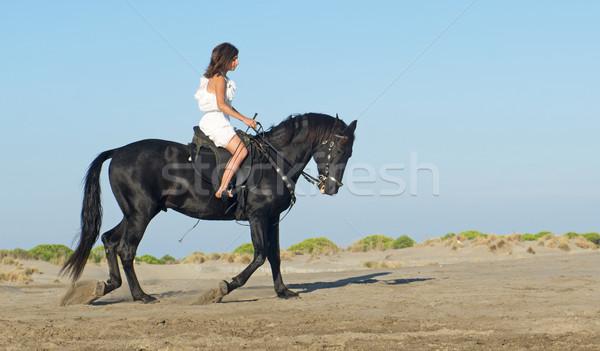 horse woman on the beach Stock photo © cynoclub