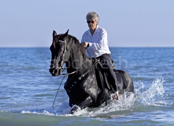 horsewoman in the sea Stock photo © cynoclub