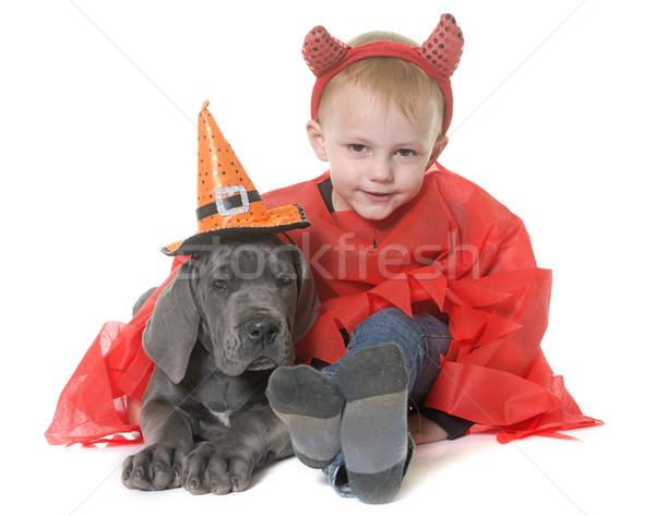 puppy great dane and little boy Stock photo © cynoclub