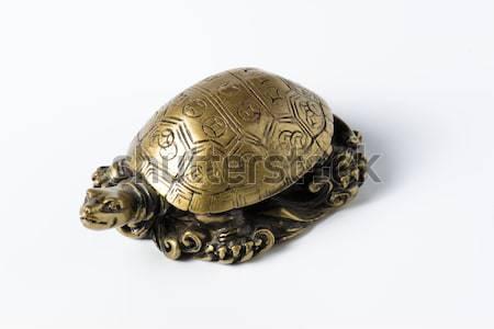 Feng shui złoty metal żółwia biały dekoracji Zdjęcia stock © cypher0x
