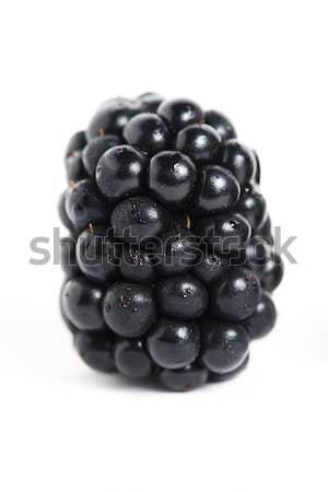 Sweet BlackBerry isolé blanche photos alimentaire Photo stock © cypher0x