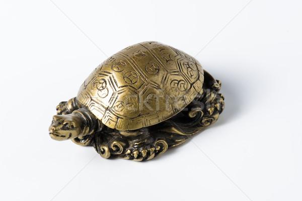 Stok fotoğraf: Feng · shui · altın · Metal · kaplumbağa · beyaz · dekorasyon