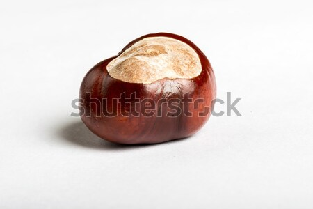 Set of chestnuts on white  Stock photo © cypher0x